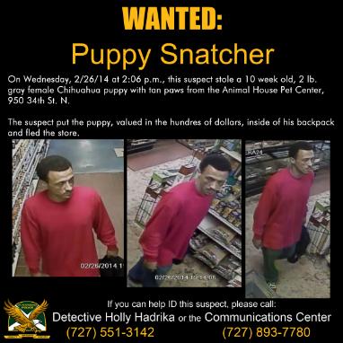 Puppy Snatcher