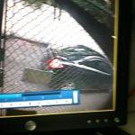 Suspect car 4