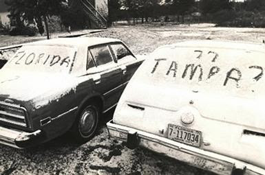 snow in tampa 3