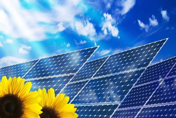 Industry chief: solar doesn't now threaten utility profits