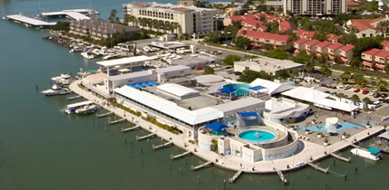 Clearwater And The Church Of Scientology Battle Over