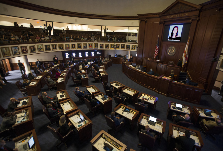 Gun reform bill passes in Florida Senate